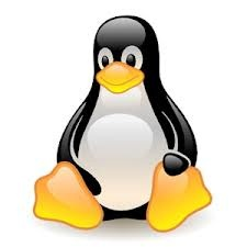 Unix - ставим, настраиваем, пользуемся: http://www.tizenexperts.com/wp-content/uploads/2013/04/images.jpg