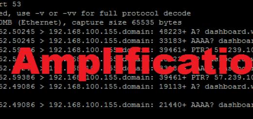 DNS Amplification DDoS