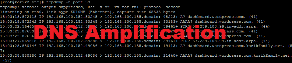 DNS Amplification DDoS